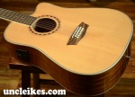 Washburn WD10SCE-12 Acoustic-Electric 12 string guitar