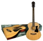 Ibanez IJVC50 Concert Full Size Acoustic Guitar Package