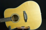 Takamine 20 Series Dreadnought Acoustic GD20-NS