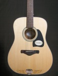 Ibanez AW58NT Dreadnought Solid Top / Rosewood Acoustic Guitar