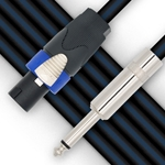 "CBI 10' 16ga Speaker Cable with Neutrik to 1/4"" SNNQ162-10"