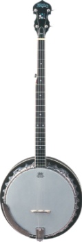 Washburn B9 5 String Resonator Back Banjo